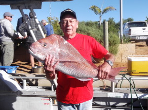 Best Pink Snapper Week 2